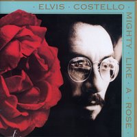 Mighty Like A Rose — Elvis Costello