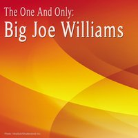 The One and Only: Big Joe Williams — Big Joe Williams