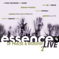 Essence Of Praise & Worship Vol. 2 — сборник