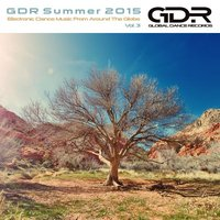 GDR Summer 2015, Vol. 3 — сборник