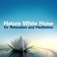 Nature White Noise for Relaxation and Meditation — Nature White Noise for Relaxation and Meditation