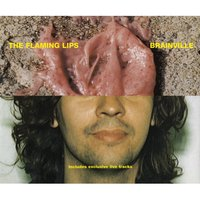 Brainville — The Flaming Lips
