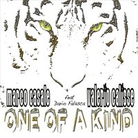 One of a Kind — Marco Casale, Valerio Calisse, Dario Falasca