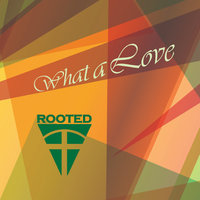 What a Love — Rooted