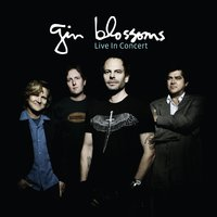 Live In Concert — Gin Blossoms