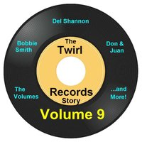 Twirl Records Story Volume 9 — сборник
