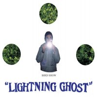 Lightning Ghost — Bird Show
