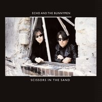 Scissors in the Sand — Echo & the Bunnymen