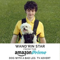 "Wand'rin' Star (From The ""Amazon Prime - Dog with a Bad Leg"" T.V. Advert) — Alan Jay Lerner, Lee Marvin, Фредерик Лоу"