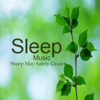 Sleeping Music: Sheep May Safely Graze — Relaxing Instrumental Players