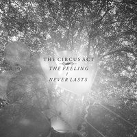 The Feeling / Never Lasts — The Circus Act