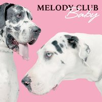 Baby (Stand Up) — Melody Club