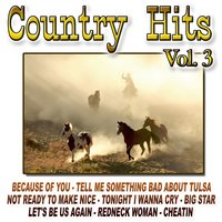 Country Hits Vol.3 — The Cowboy Band