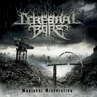 Maniacal Miscreation — Cerebral Bore
