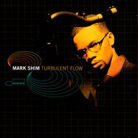 Turbulent Flow — Mark Shim