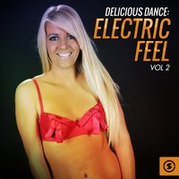 Delicious Dance: Electric Feel, Vol. 2 — сборник