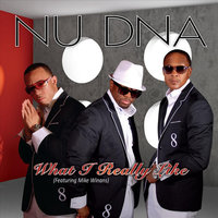 What I Really Like (feat. Mike Winans) — Nu DNA