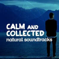 Calm and Collected: Natural Soundscapes — Forest Sounds Relaxing Spa Music Singing Birds, The Ultimate Sounds of Nature, Relaxing Nature Sounds, Forest Sounds Relaxing Spa Music Singing Birds|Relaxing Nature Sounds|The Ultimate Sounds of Nature