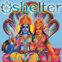 Eternal — Shelter