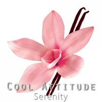 Cool Attitude: Serenity — Coolness Trio