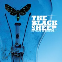 Not Part Of The Deal — The Black Sheep