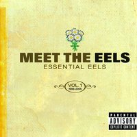 Meet The EELS: Essential EELS 1996-2006 Vol. 1 — Eels