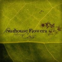 Featuring Cass — Nuthouse Flowers