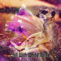 Chill With White Noise — Rain Sounds & White Noise, Water Sound Natural White Noise, Relaxing With Sounds of Nature and Spa Music Natural White Noise Sound Therapy