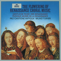 The Flowering of Renaissance Choral Music — Bruno Turner, Pro Cantione Antiqua, London