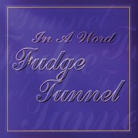In a Word — Fudge Tunnel
