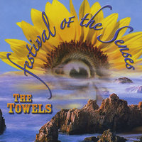 Festival Of The Senses — The Towels