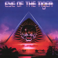 Eye Of The Tiger — Tiger Tiger