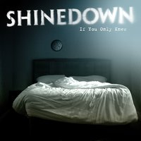 If You Only Knew — Shinedown