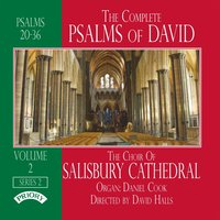 The Complete Psalms of David Volume 2 — The Choir of Salisbury Cathedral|David Halls|Daniel Cook