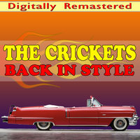 Back in Style — The Crickets
