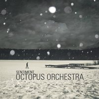 Sentiment — Octopus Orchestra