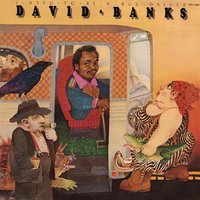I Used to Be a Bus Driver — David Banks