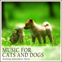 Music for Cats and Dogs — сборник