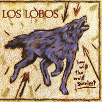 How Will the Wolf Survive? — Los Lobos