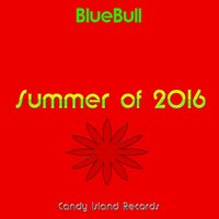 Summer of 2016 — BlueBull