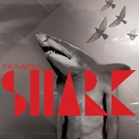 Shark — The Plastics