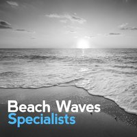 Beach Waves Specialists — Beach Waves Specialists