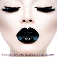 Shuga Lips: The Electronica Collection, Vol. 14 — сборник