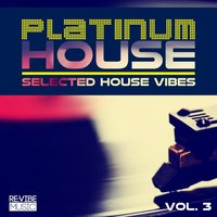 Platinum House Vol. 3 - Selected House Vibes — сборник