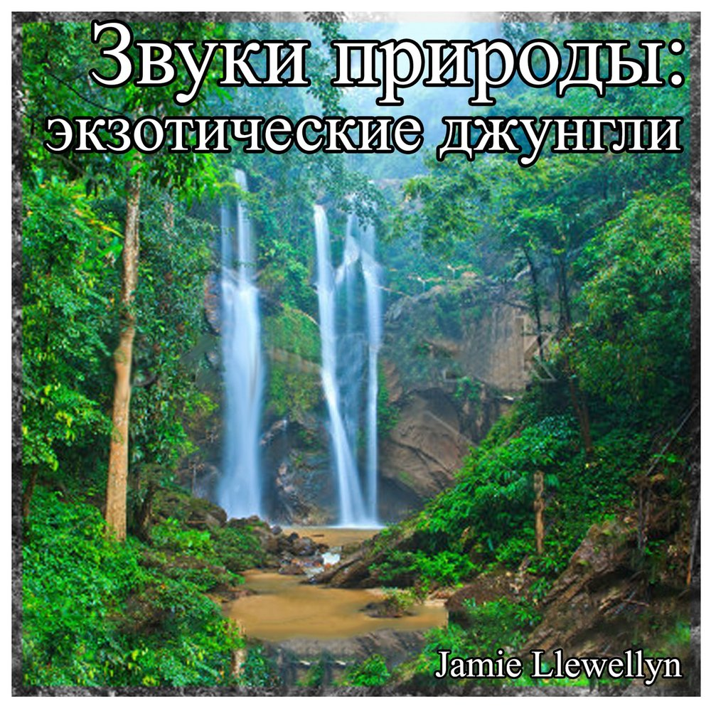 Звуки джунгли скачать бесплатно