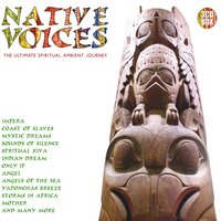 Native Voices Part 2 Vol 2 — сборник