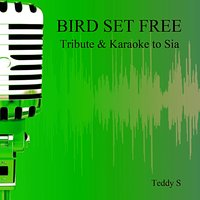 Bird Set Free: Tribute & Karaoke to Sia — Teddy S
