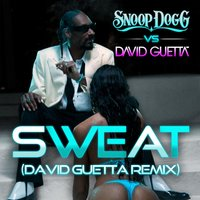 Sweat/Wet — David Guetta, Snoop Dogg
