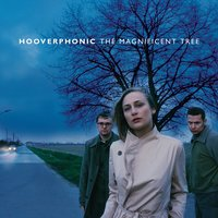 The Magnificent Tree — Hooverphonic