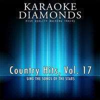 The Best for Country Musicians, Vol. 17 — сборник